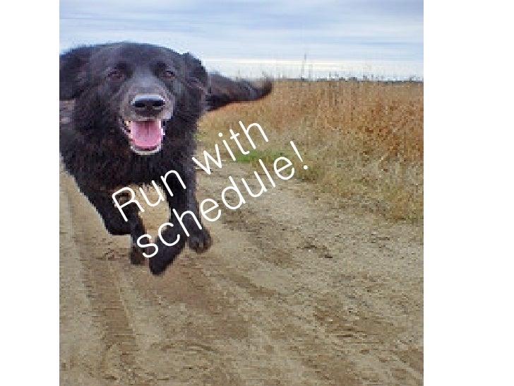 Run and be happy and healthy run with schedule publicscrutiny Choice Image