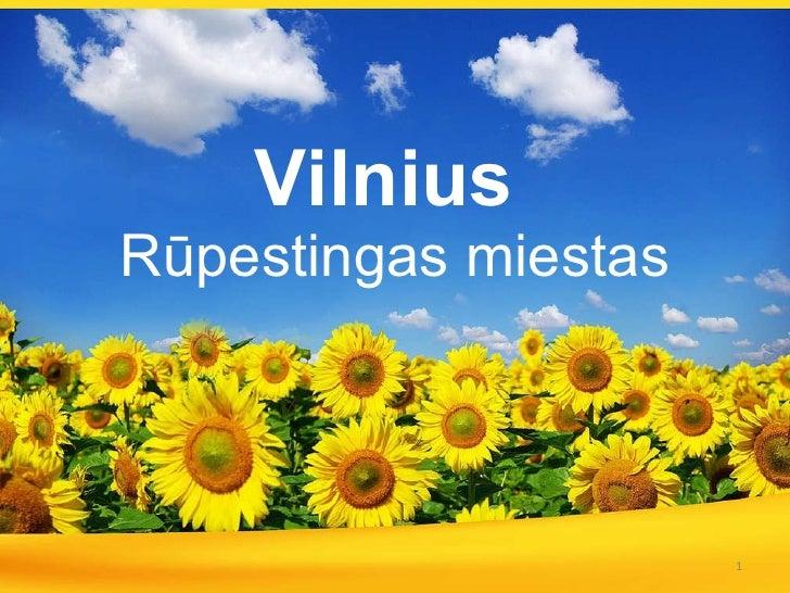 Vilnius   Rūpestingas miestas
