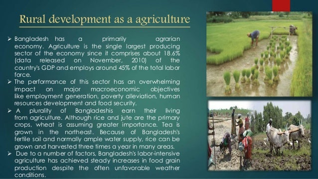 rural development in bangladesh With this objective of planned development for the country, the bangladesh planning commission was established in january 1972the bangladesh planning commission had its roots in pre-independence bangladesh water resources & rural institution committees nec ecnec.