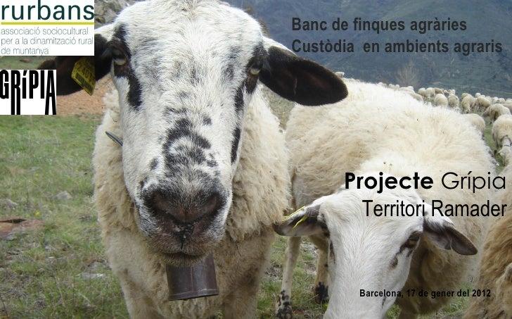 Banc de finques agràriesCustòdia en ambients agraris      Projecte Grípia        Territori Ramader         Barcelona, 17 d...