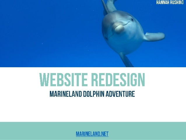 This presentation is an overview of my role in the website redesign for Marineland Dolphin Adventure, Georgia Aquarium's p...