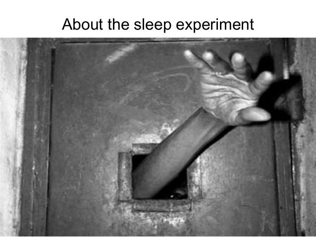 download movie russian sleep experiment