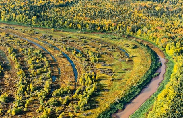 """Delta Queen"". Along the Delta of the Volga River in the Astrakhan region."
