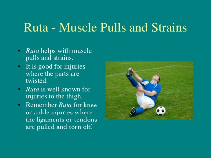 Ruta graveolens - Injuries to Ligaments and Tendons Slide 3
