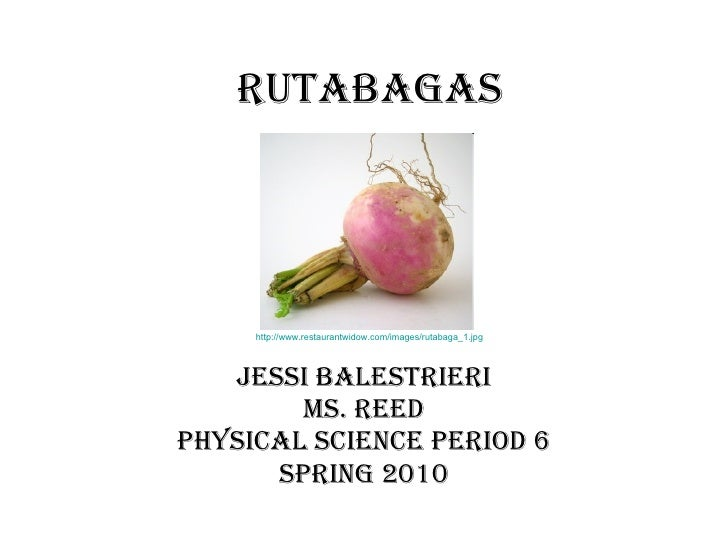 Rutabagas Jessi Balestrieri Ms. Reed Physical Science Period 6 Spring 2010 http://www.restaurantwidow.com/images/rutabaga_...