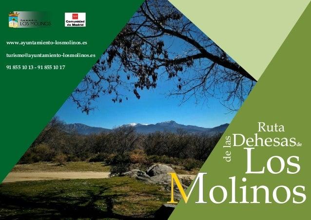Ruta delas Dehesasde Los olinos www.ayuntamiento-losmolinos.es turismo@ayuntamiento-losmolinos.es 91 855 10 13 - 91 855 10...