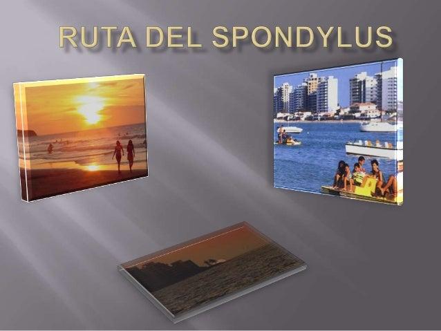 La primera de muchas atracciones a lo largo de la Rutadel Spondylus es la presencia de una arquitecturapreservada y de una...