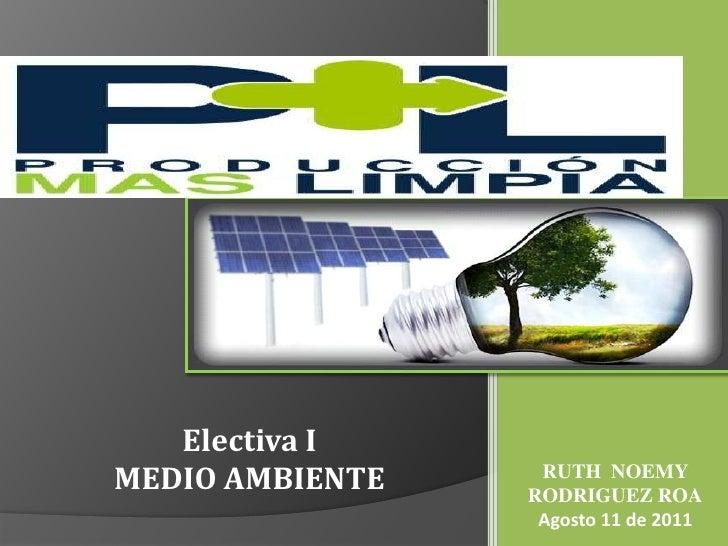 Electiva I<br />MEDIO AMBIENTE<br />RUTH  NOEMY RODRIGUEZ ROA<br />Agosto 11 de 2011<br />