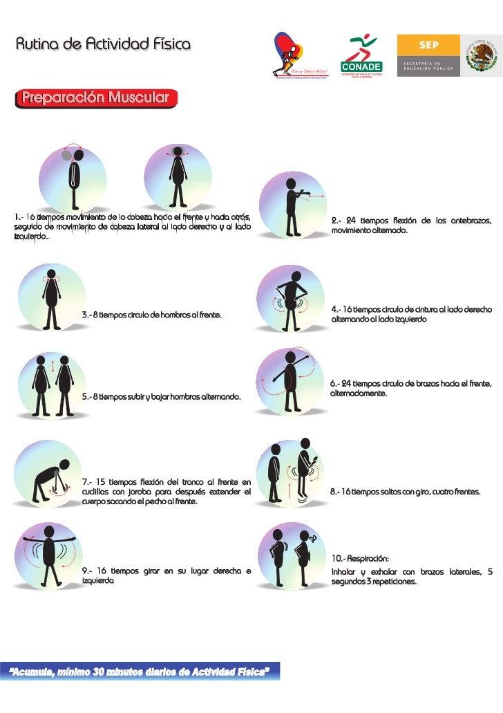 1.- 16 tiempos movimiento de la cabeza hacia el frente y hacia atrás,   2.- 24 tiempos flexión de los antebrazos,  seguido...