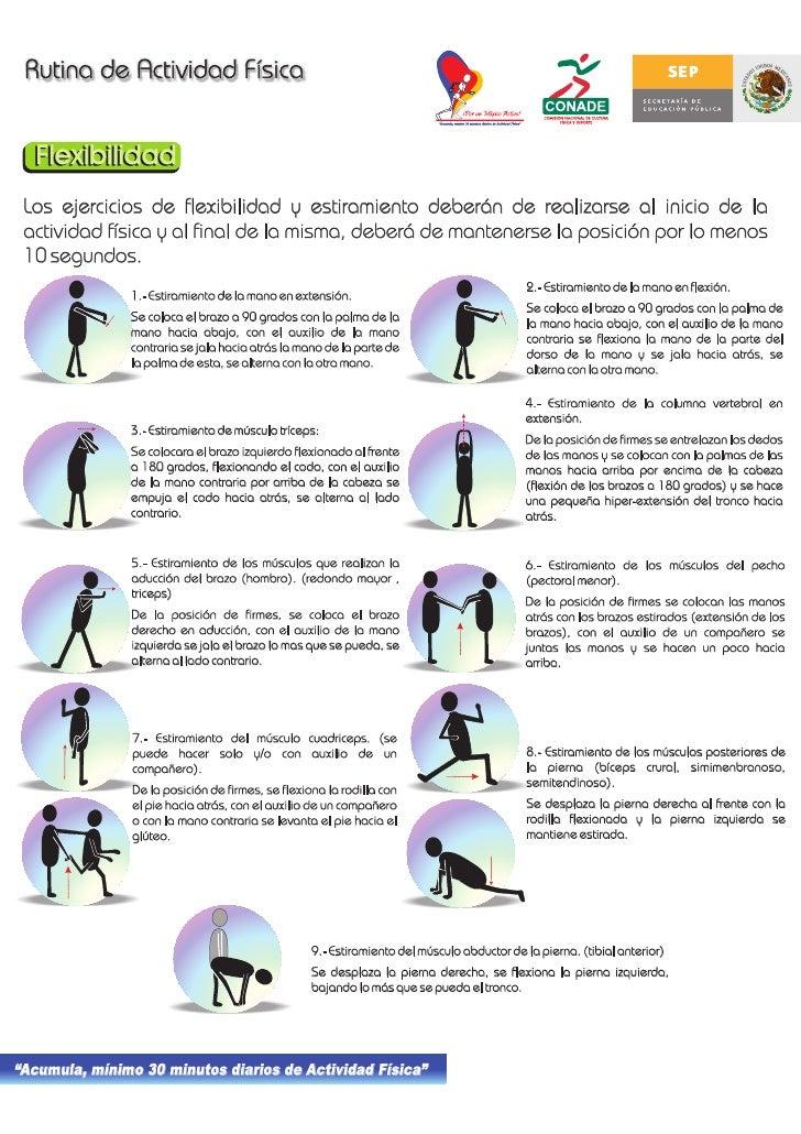 Los ejercicios de flexibilidad y estiramiento deberán de realizarse al inicio de la actividad física y al final de la mism...