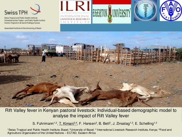Rift Valley fever in Kenyan pastoral livestock: Individual-based demographic model to analyse the impact of Rift Valley fe...
