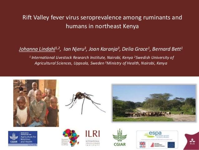 Rift Valley fever virus seroprevalence among ruminants and humans in northeast Kenya Johanna Lindahl1,2, Ian Njeru3, Joan ...