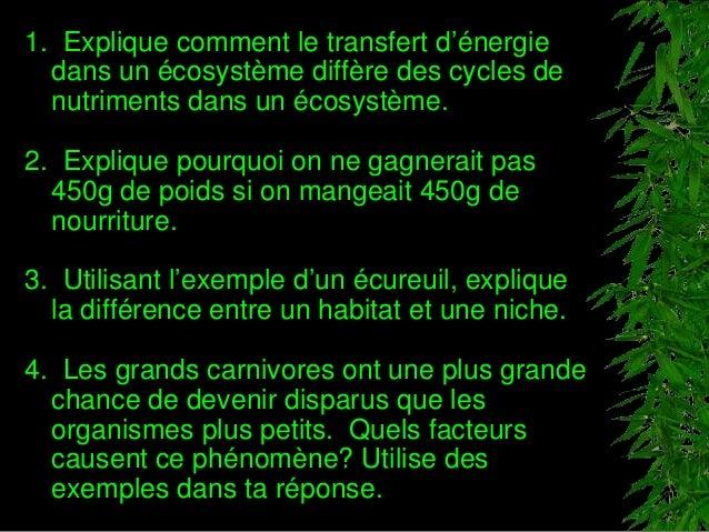 1. Explique comment le transfert d'énergie dans un écosystème diffère des cycles de nutriments dans un écosystème. 2. Expl...