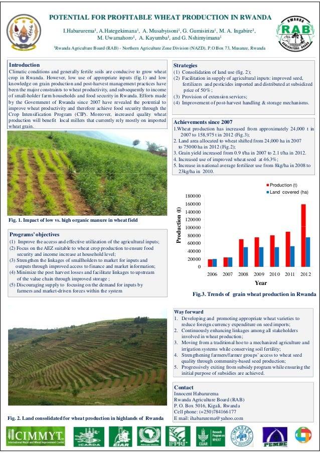 POTENTIAL FOR PROFITABLE WHEAT PRODUCTION IN RWANDA                           I.Habarurema1, A.Hategekimana1, A. Musabyiso...
