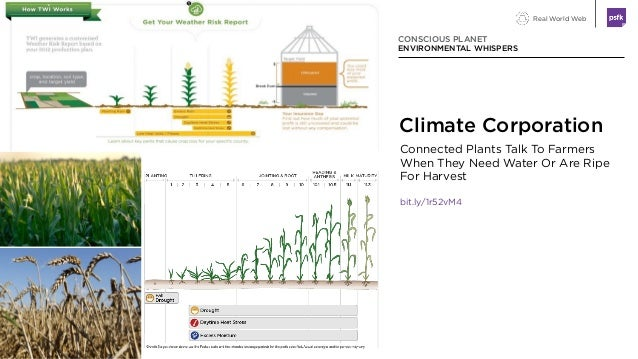 Real World Web Connected Plants Talk To Farmers When They Need Water Or Are Ripe For Harvest bit.ly/1r52vM4 CONSCIOUS PLAN...