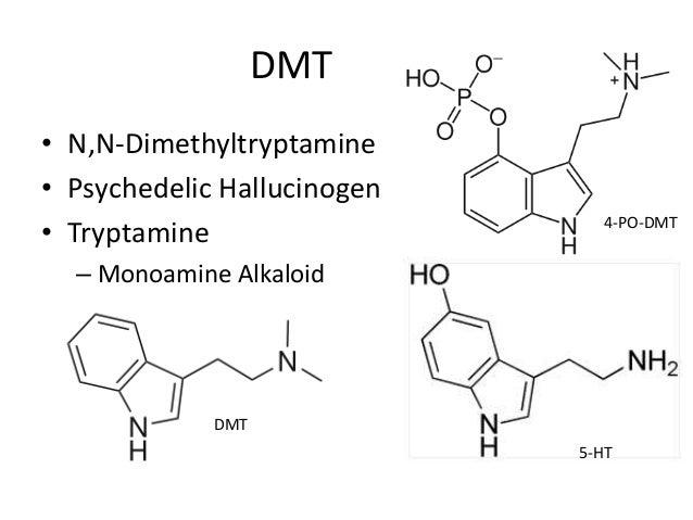 Drug Abuse & Society (RX 462) Presentations-Spring 2014