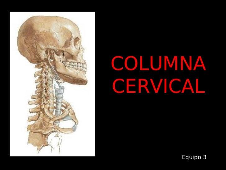 Rx.Columna Cervical