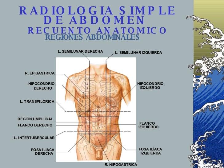 RADIOLOGIA SIMPLE DE ABDOMEN    RECUENTO ANATOMICO   REGIONES ABDOMINALES L. SEMILUNAR DERECHA L. SEMILUNAR IZQUIERDA HIPO...