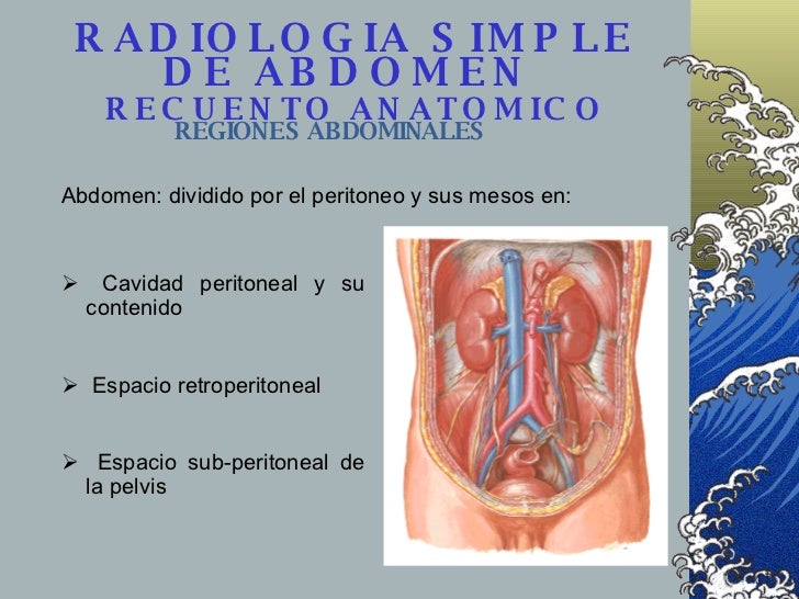 RADIOLOGIA SIMPLE DE ABDOMEN    RECUENTO ANATOMICO   REGIONES ABDOMINALES Abdomen: dividido por el peritoneo y sus mesos e...
