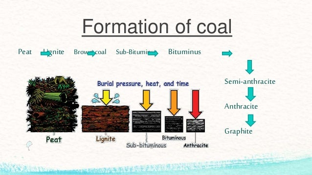 Carbon 14 is used for radio dating of organic materials 3