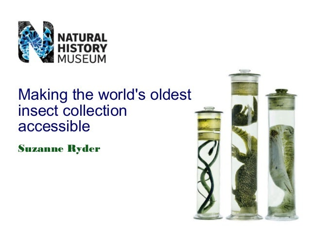 Making the world's oldest insect collection accessible Suzanne Ryder