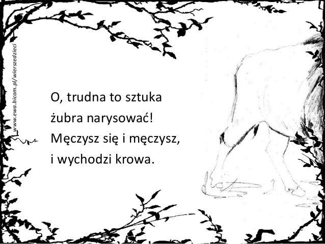 Rysowanie żubra Kobryńczuk Jedliński Białek Wiersze