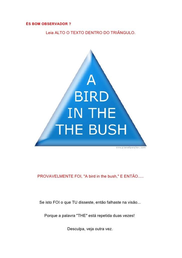 ÉS BOM OBSERVADOR ?          Leia ALTO O TEXTO DENTRO DO TRIÂNGULO.         PROVAVELMENTE FOI, quot;A bird in the bush,quo...