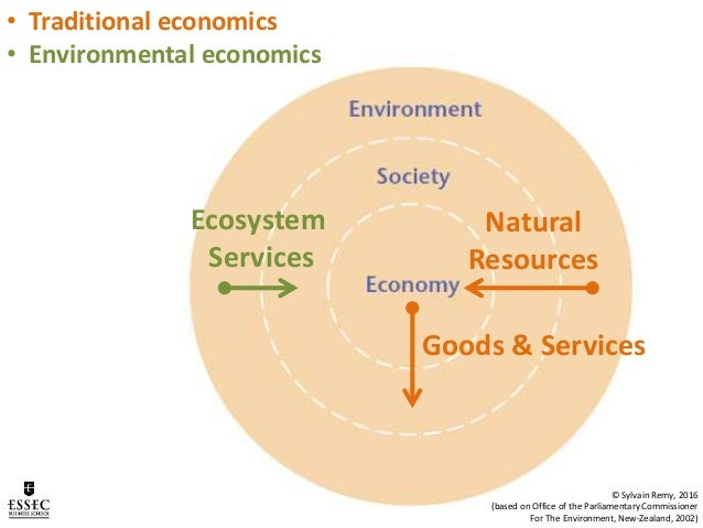 Environmental And Natural Resource Economics Forests
