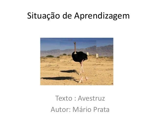 Situação de AprendizagemTexto : AvestruzAutor: Mário Prata
