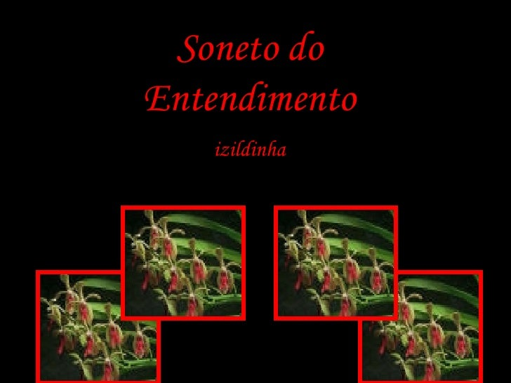 Soneto do Entendimento izildinha