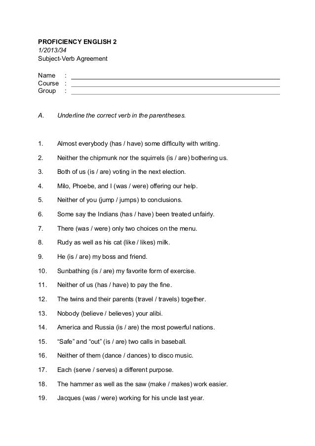essay using subject verb agreement