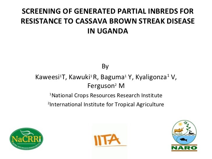 SCREENING OF GENERATED PARTIAL INBREDS FORRESISTANCE TO CASSAVA BROWN STREAK DISEASE                 IN UGANDA            ...
