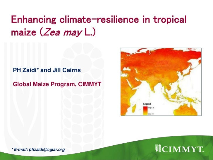 Enhancing climate-resilience in tropicalmaize (Zea may L.)PH Zaidi* and Jill CairnsGlobal Maize Program, CIMMYT* E-mail: p...