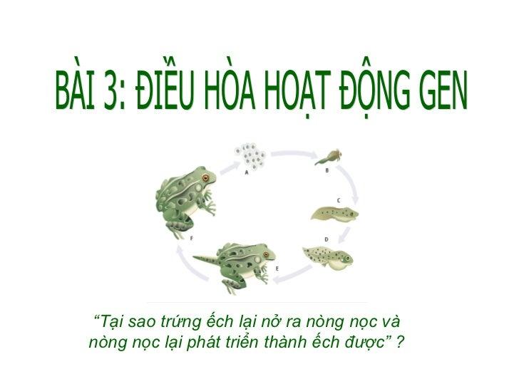 """BÀI 3: ĐIỀU HÒA HOẠT ĐỘNG GEN """" Tại sao trứng ếch lại nở ra nòng nọc và nòng nọc lại phát triển thành ếch được"""" ?"""