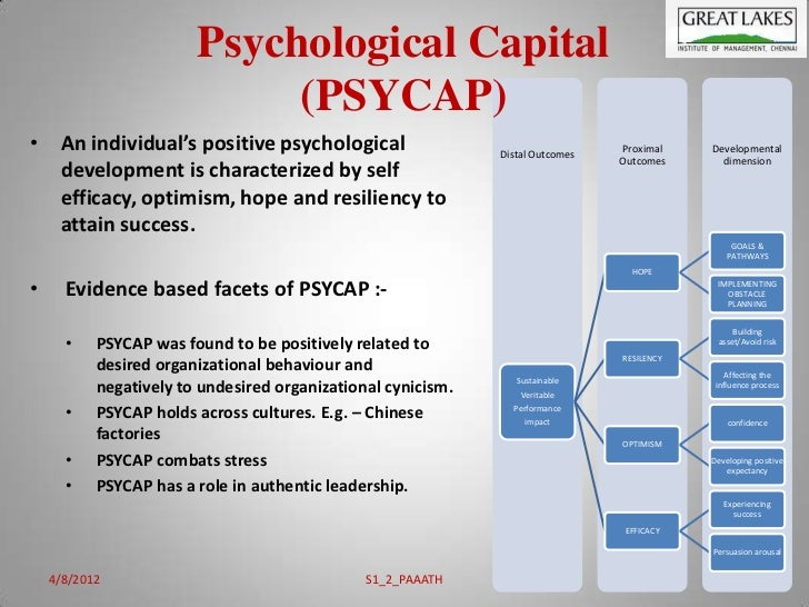 psychological capital measurement and relationship with performance satisfaction