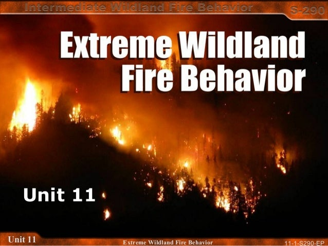 11-1-S290-EPUnit 11 Extreme Wildland Fire Behavior Unit 11