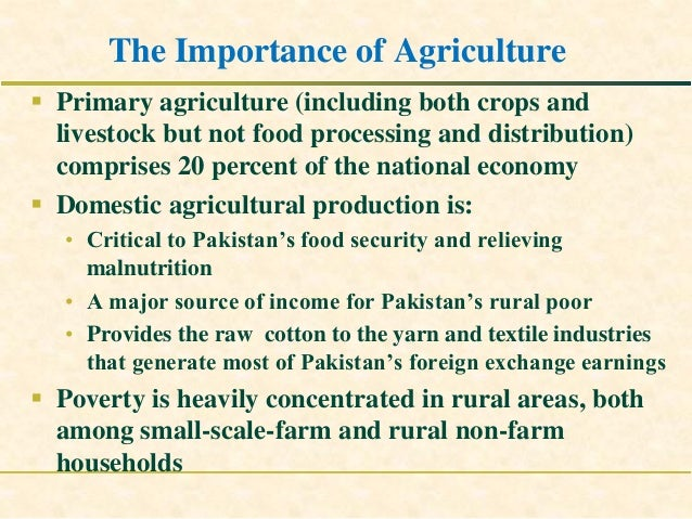 poverty reduction in pakistan with respect The success stories of asia's industrialisation bear witness to the fact that employment-generation and poverty-reduction – along with power and prosperity – can best be achieved through the.