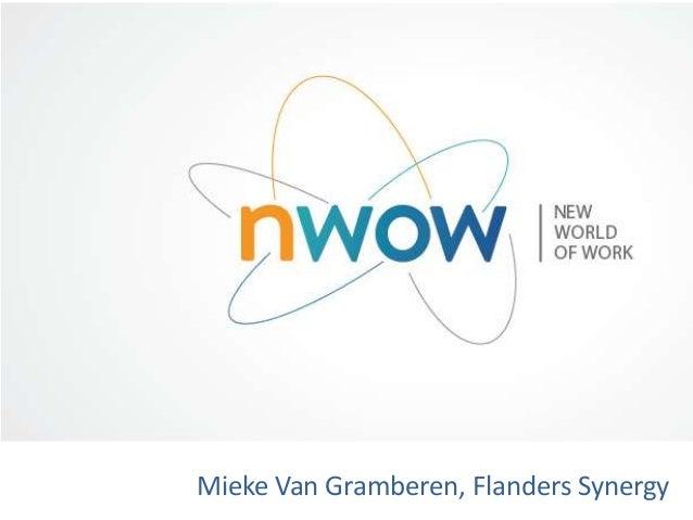 Mieke Van Gramberen, Flanders Synergy