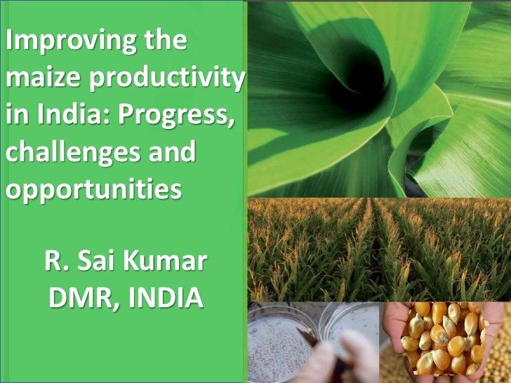 Improving themaize productivityin India: Progress,challenges andopportunities   R. Sai Kumar   DMR, INDIA