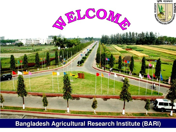BANGLADESH - who.int