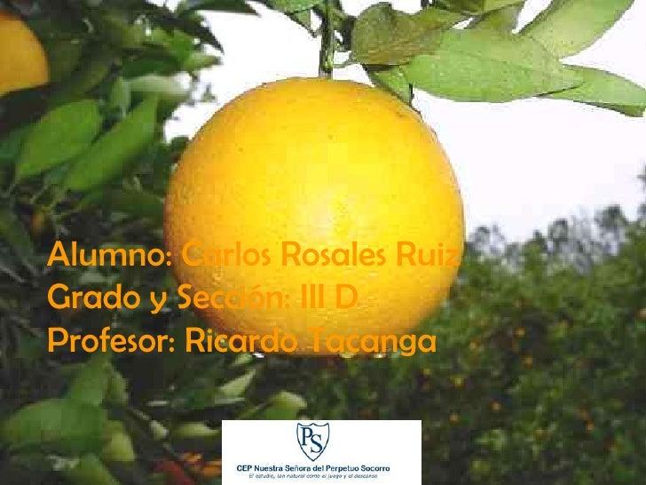 La Naranja  Alumno: Carlos Rosales Ruiz Grado y Sección: III D Profesor: Ricardo Tacanga
