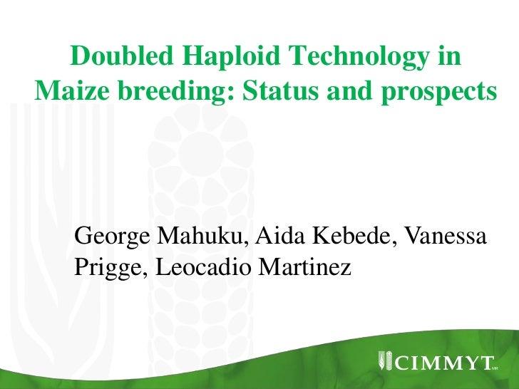 Doubled Haploid Technology inMaize breeding: Status and prospects   George Mahuku, Aida Kebede, Vanessa   Prigge, Leocadio...