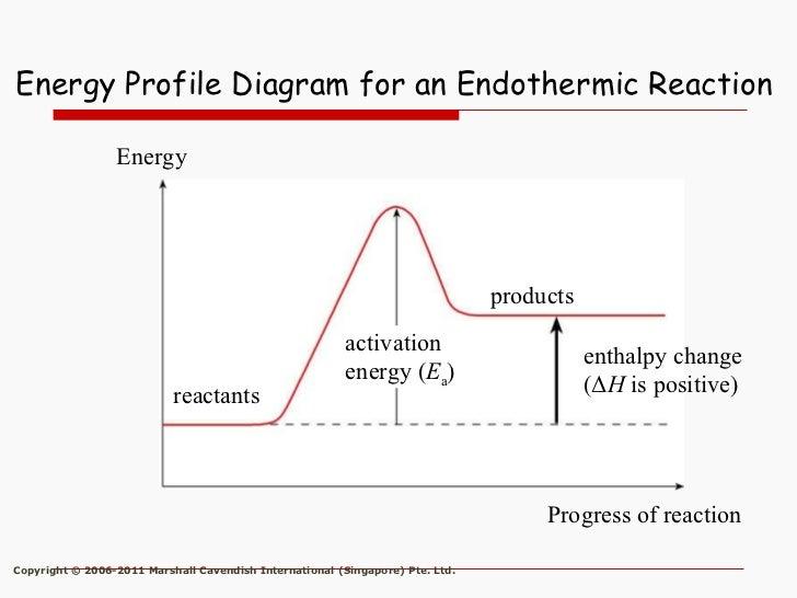 Energy Profile Diagram Endothermic Reaction Diy Wiring Diagrams