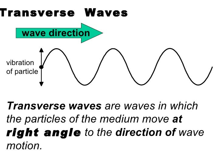 introduction to wave motion Start studying introduction to physical science : chapter 6 learn vocabulary, terms, and more with flashcards, games  cdirection of the wave motion.