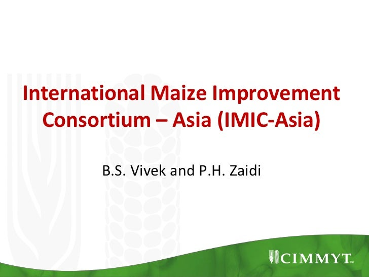 International Maize Improvement  Consortium – Asia (IMIC-Asia)       B.S. Vivek and P.H. Zaidi