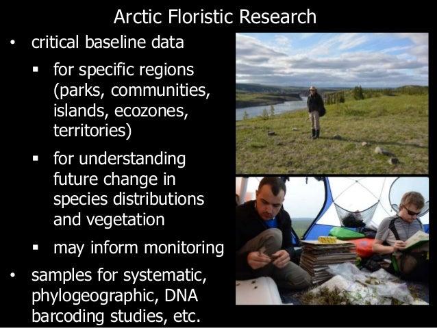 Arctic mining consultants final