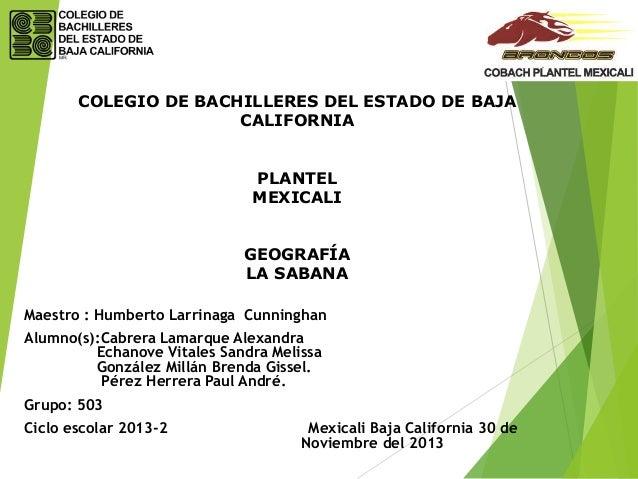 COLEGIO DE BACHILLERES DEL ESTADO DE BAJA CALIFORNIA PLANTEL MEXICALI GEOGRAFÍA LA SABANA Maestro : Humberto Larrinaga Cun...