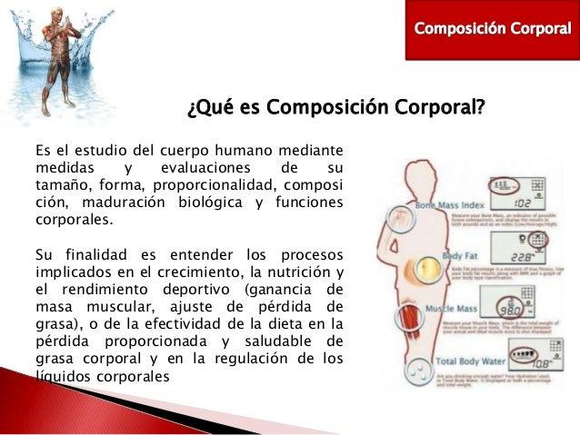 Sabado diplomado for Medidas ergonomicas del cuerpo humano