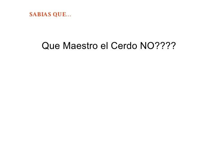 <ul><li>Que Maestro el Cerdo NO???? </li></ul>