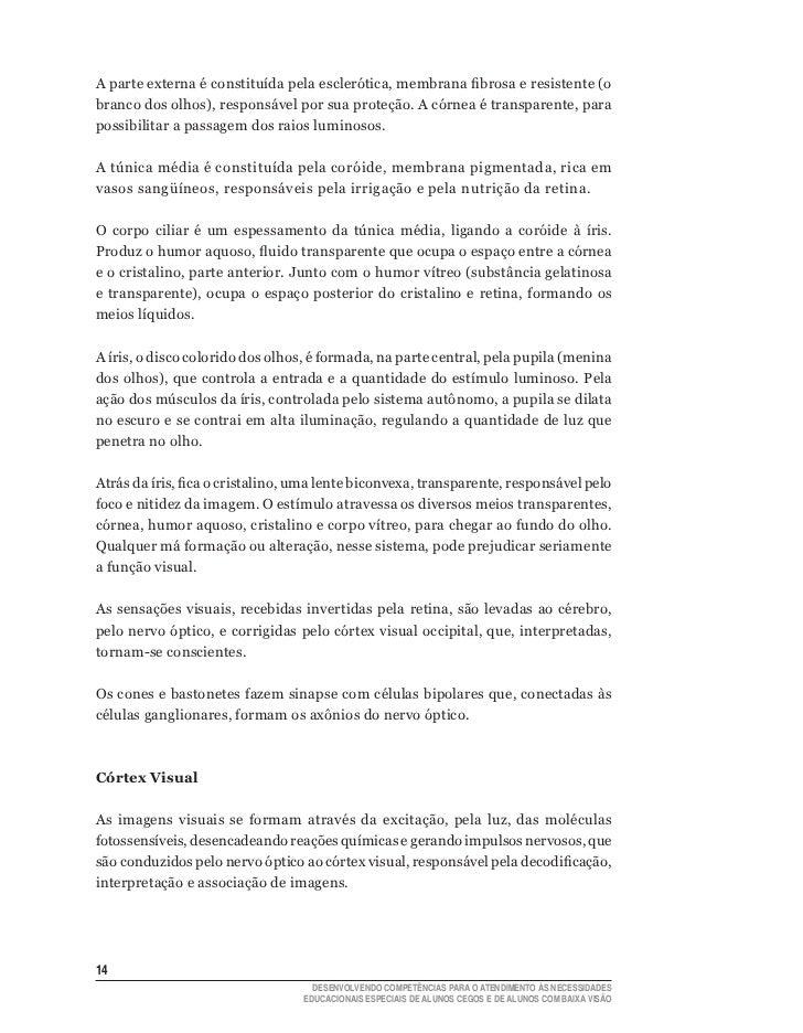 1e53a133d19 Saberes e Praticas da Inclusão - Alunos Cegos